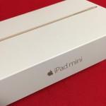 テザリングOK!iPad mini4でmineo(マイネオ)のSIMを使ってみた!